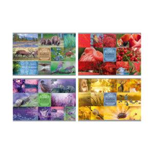 Альбом для рисования 16л. А4 «BG» Live Planet, на скрепке, эконом, арт.АР4ск16 5344 (1/20) БЗ007781